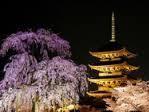 京都③東寺 (2)